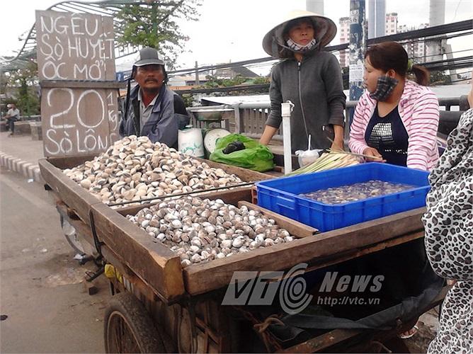 Ngoài cua, các loại nghiêu - sò - ốc - hến... cũng được bán nhiều trên cầu Tham Lương (Q.12), dưới chân cầu vượt tại Q.12, Q.Thủ Đức, Q.Bình Tân... giá vài chục ngàn đồng/kg.