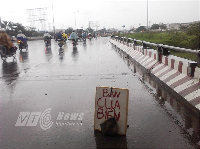 Một bảng thông báo 'bán cua biển' ở dưới gầm cầu đường cao tốc (Q.Bình Tân), cách nơi bán thực tế đến trăm mét.