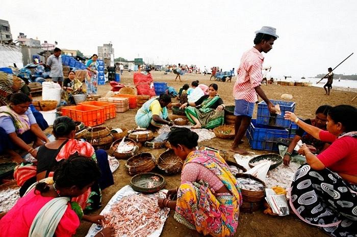 Cảnh mua bán hải sản buổi sáng sớm ở làng ven biển Mumbai