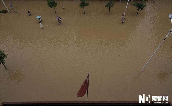 Gần 8 triệu người bị ảnh hưởng bởi lụt lội và hơn 840.000 người ở các tỉnh Hắc Long Giang, Liêu Ninh và Quảng Đông phải sơ tán