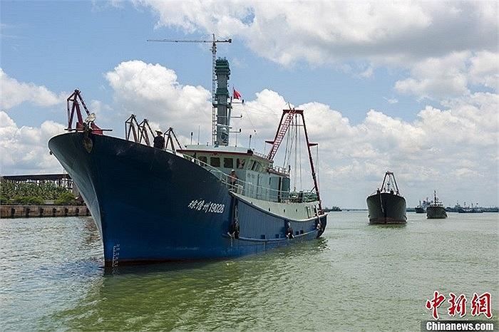 Đội tàu đánh cá Đam Châu (tỉnh Hải Nam, Trung Quốc) gồm 32 chiếc sáng ngày 6/5 xuất phát từ cảng cá Bạch Mã Tỉnh bắt đầu tiến ra ngư trường Trường Sa của Việt Nam để đánh bắt hải sản