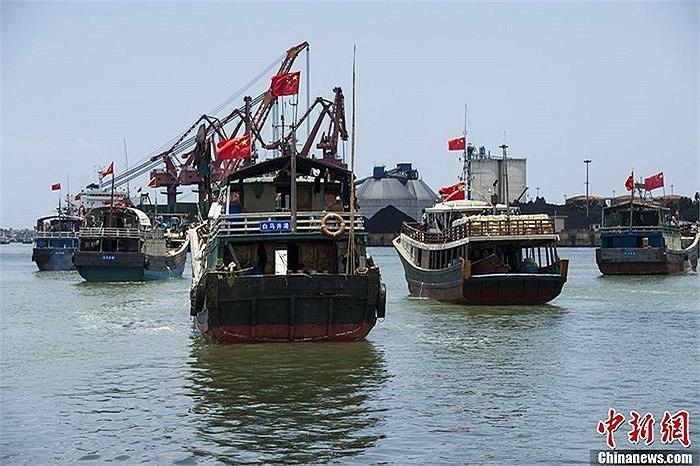 Đội tàu cá Trung Quốc khi vừa rời cảng Bạch Mã Tỉnh ngày 6/5