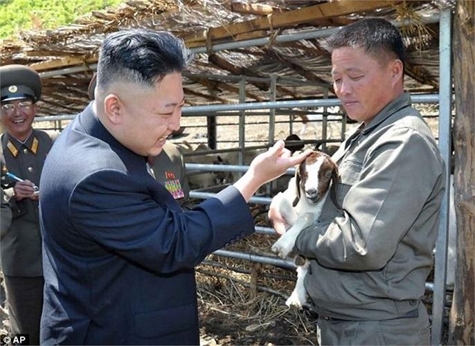 Nhà lãnh đạo Kim Jong-un tới thăm trang trại chăn nuôi của một đơn vị quân đội nước này