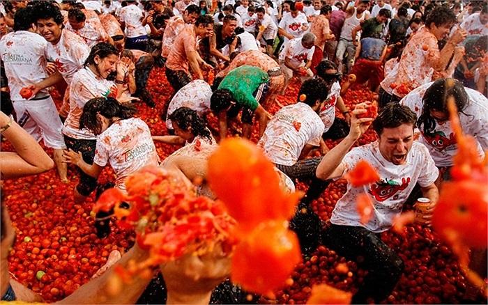 Lễ hội cà chua bắt đầu diễn ra ở Colombia vào ngày 2/6