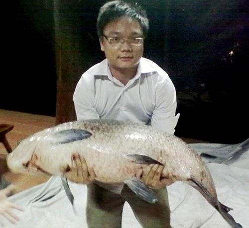 """""""Thủy quái"""" cá trắm đen do hai bố con anh Phùng Thế Hùng săn được sau 2 năm nhử mồi tại hồ khu 3 thuộc khu du lịch Thiên Sơn Suối Ngà - Ba Vì - Hà Nội. Cá nặng gần 30kg, dài đến gần 1,5m."""