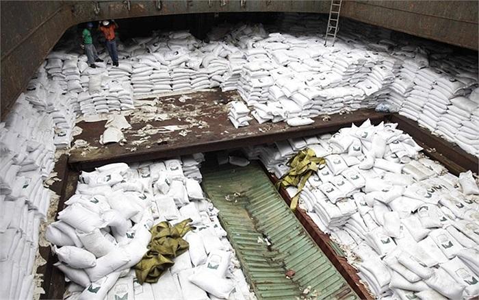 Công nhân đứng trên bao tải đường dùng để ngụy trang cho tên lửa Triều Tiên bị bắt giữ ở Panama