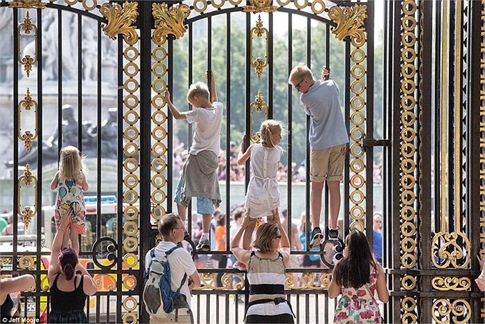 Trẻ con tò mò leo lên hàng rào để nhìn rõ bảng thông báo ở Cung điện Buckingham