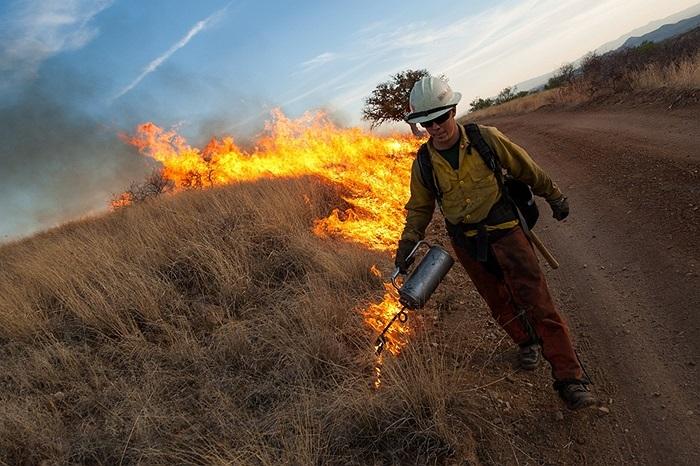 Các nhân viên cứu hỏa dùng tường lửa để ngăn cháy rừng ở Patagonia, Arizona