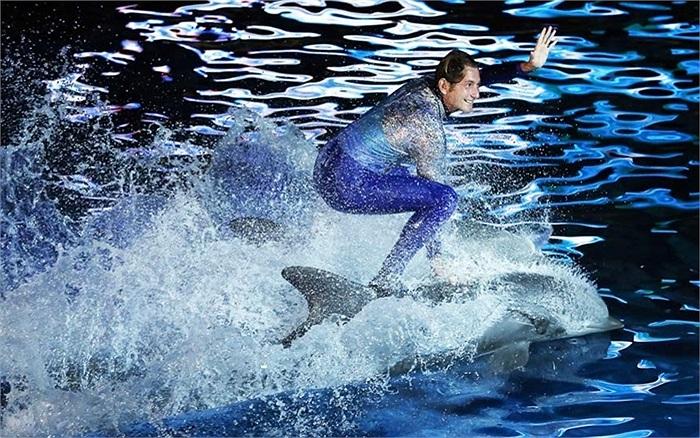 Huấn luyện viên cùng cá heo biểu diễn tại công viên động vật Marineland, ở French Riviera, Antibes, đông nam nước Pháp