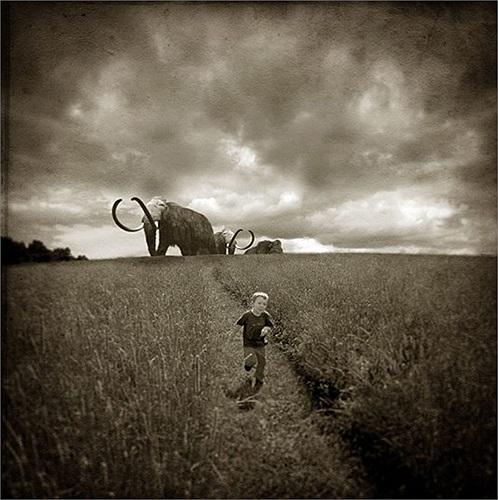 David Niles, 60 tuổi, tạo ra các hình ảnh vui nhộn về giấc mơ của cậu con trai 10 tuổi