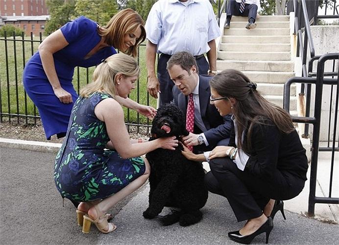 Con chó mới ở Nhà Trắng