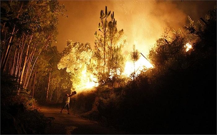 Nỗ lực ngăn chặn đám cháy rừng của một người dân ở Santiago de Besteiros, Bồ Đào Nha