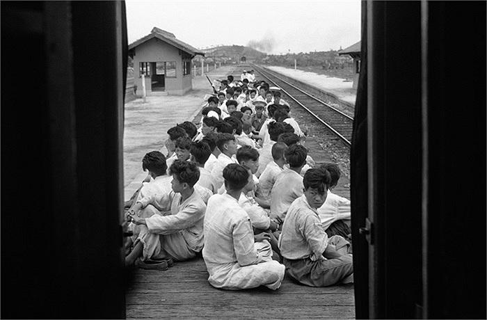Những tân binh Hàn Quốc ngồi chờ được chuyển giao cho một trung tâm huấn luyện của quân đội để phục vụ cho cuộc chiến chống lại miền Bắc, ngày 17/7/1950. Ảnh: AP