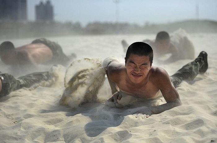 Bò trên cát nóng trong khi nhiệt độ ngoài trời lên đến 39 độ C