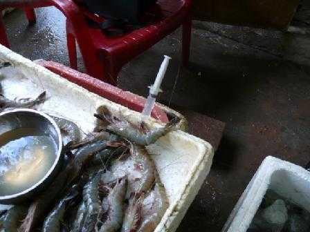 Phòng Cảnh sát phòng chống tội phạm về môi trường – Công an Tỉnh Nam Định phát hiện, bắt quả tang nhân công đang thực hiện bơm tạp chất vào tôm