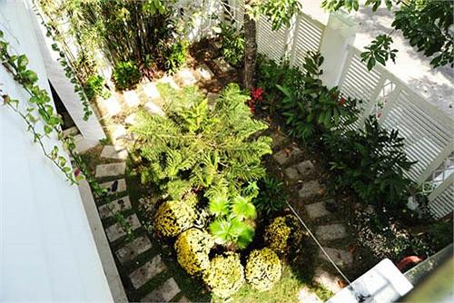Sân cạnh nhà là một vườn kiểng được chăm chút kỹ lưỡng.
