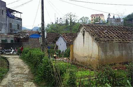 Tại thị trấn Mường Khương và 11 xã của huyện, các mái nhà lợp ngói đều bị vỡ hết.(Ảnh VNE)