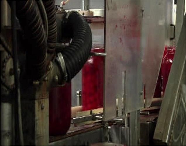 Vết đỏ vương vãi trên dây chuyền chế biến.