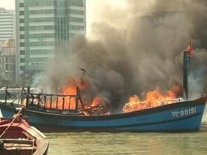 cháy tàu, biển nha trang, ngư dân, cứu sống