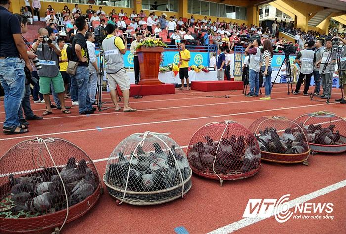 Những lồng chim được BTC chuẩn bị cho lễ mừng chức vô địch của Hà Nội T&T. (Ảnh: Quang Minh)
