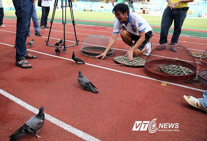 Một hình ảnh rất vui khi HLV Phan Thanh Hùng đi đuổi chim. (Ảnh: Quang Minh)