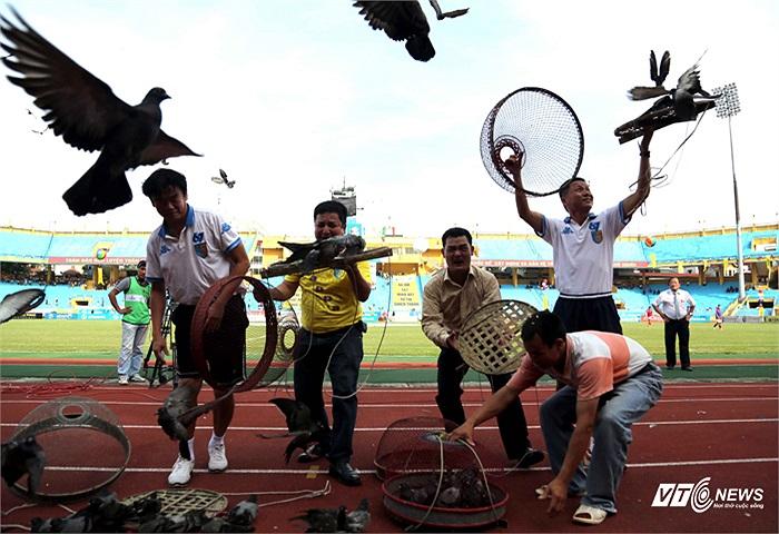 Hà Nội là thành phố Hòa bình, và những chú chim bồ câu là một biểu tượng của sự hòa bình. (Ảnh: Quang Minh)