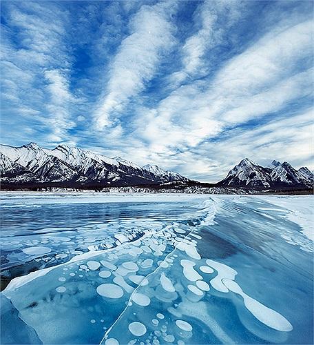 Khí mê tan trong lòng hồ được tạo ra từ xác các loài thực vật, động vật.