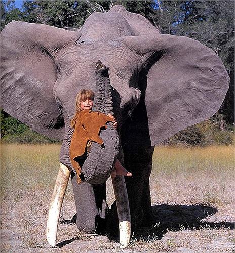 Hai người bạn thân nhất của cô bé là chú báo hoang có tên là J&B và voi khổng lồ Abu.