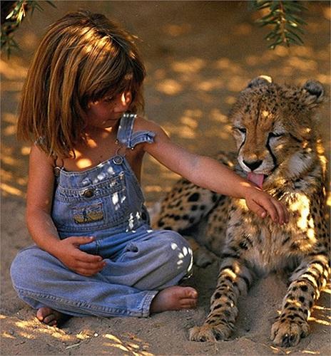 Cứ như vậy, tuổi thơ ấu đẫm chất nguyên thủy của Tippi Degré đã làm cho cô bé như bị cô lập trước thế giới hiện đại của nước Pháp sau 10 năm sinh sống rừng hoang.