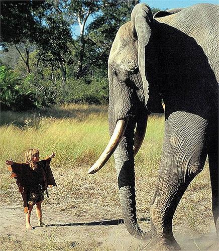 Cô 'gái rừng xanh' có tên họ đầy đủ là Tippi Benjamine Okanti Degré, sinh năm 1990. Cha mẹ là nhiếp ảnh gia và quay phim chuyên nghiệp người Pháp Sylvie Robert và Alain Degré.