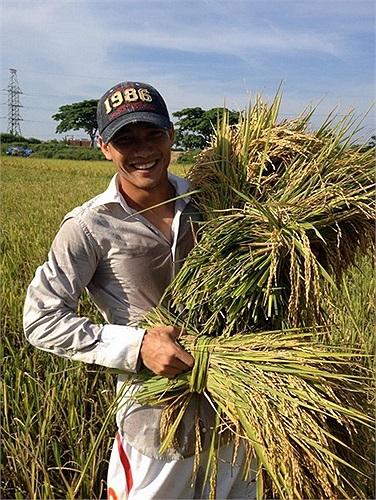 Không đi du lịch, trung vệ Đại Đồng về quê gặt lúa, phụ giúp gia đình.