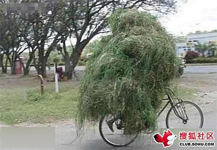 Không nhìn thấy người đi xe đạp đâu