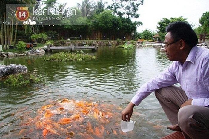 Chủ nhân của nó đã bỏ tiền để tạo một quả đồi trong khuôn viên để tạo điểm nhấn; hồ cá cảnh; khu vực trồng tùng, cây cảnh, hòn non bộ xen kẽ.