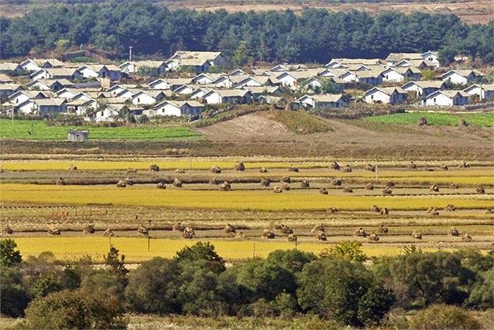 Cả 2 miền Bắc, Nam đều có những thị trấn nhỏ nằm trong vùng phi quân sự