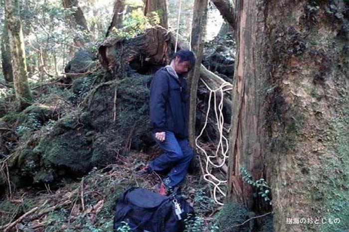 Kinh hoàng nhất là năm 2010, có 274 người vào khu rừng này để tìm cách chết. Rất may là lực lượng cảnh sát đã cứu sống được tới 224 người. Chỉ có 54 người tự tử thành công.