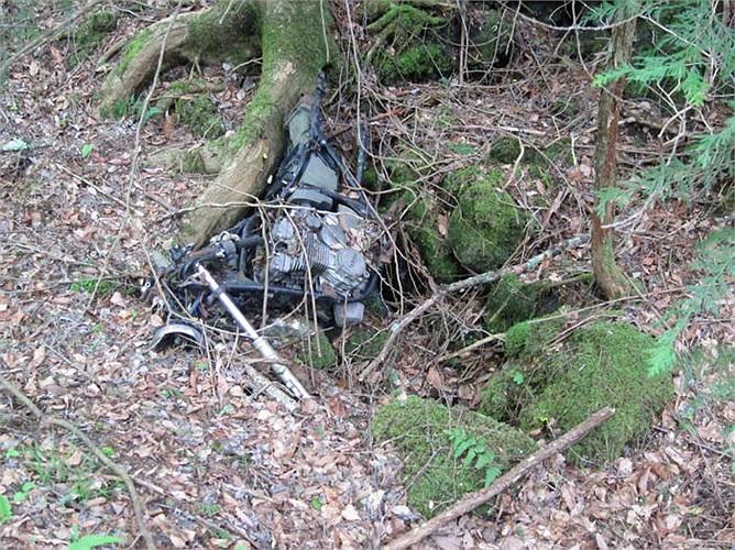 Chưa có vùng đất nào mà số lượng người tự tử nhiều như một khoảnh rừng trong khu Rừng Tự Sát.