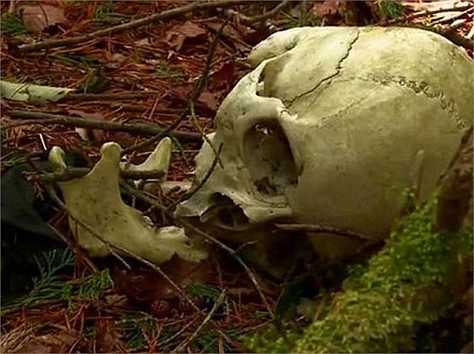 Số thi thể người tự tử ở khu rừng này ngày càng lấp đầy các tòa nhà do người dân địa phương xây dựng.