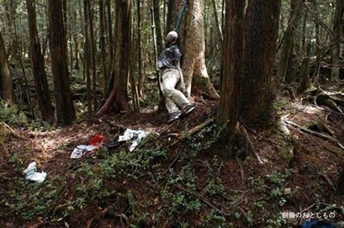 Tiểu thuyết kết thúc với cái chết bi thảm của hai người yêu nhau trong khu rừng này. Họ đã cùng nhau tự kết liễu đời mình, để mãi mãi được bên nhau.
