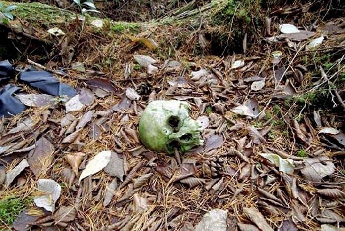 Theo truyền thuyết của hai ngôi làng ở cạnh Rừng Tự Sát, thì thực ra chuyện tự tử ở khu rừng bắt nguồn từ tục Ubasute. Tục lệ này có từ thế kỷ 19.