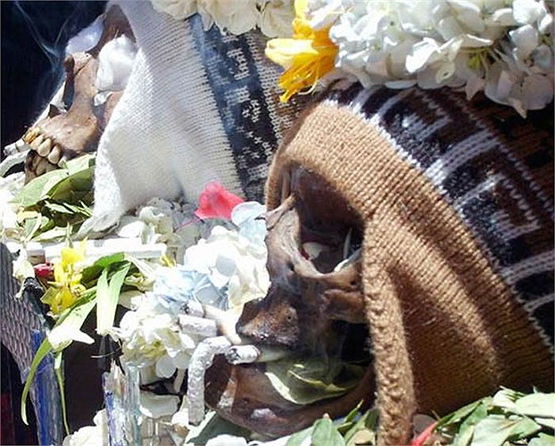 Mặc dù nhiều người cho là kỳ quái nhưng đối với những người dân bản địa nơi đây, Lễ hội này rất quan trọng trong đời sống tinh thần của họ.
