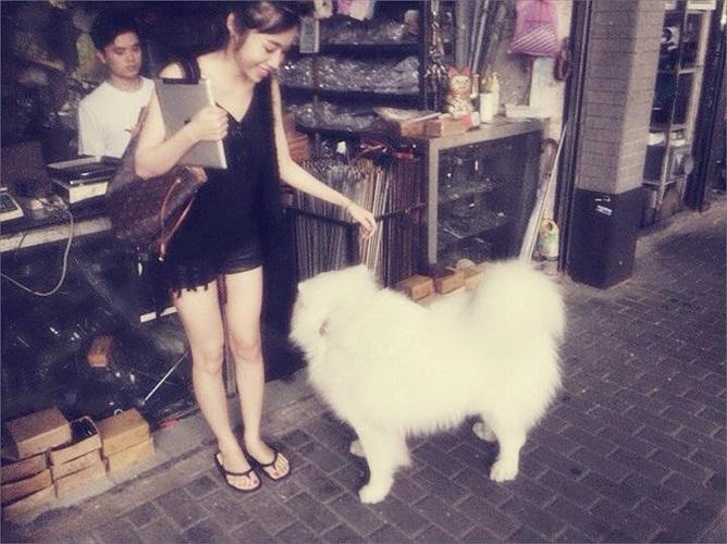 Cô thỏa sức nô đùa và yêu thương những chú cún.