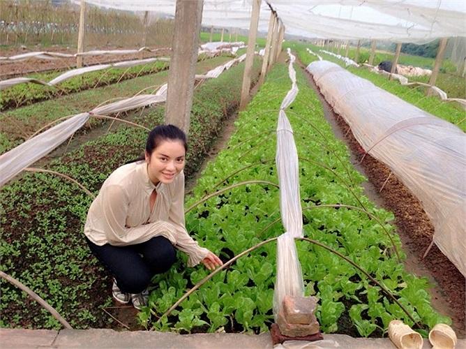 Lý Nhã Kỳ tạo dáng giữa cánh đồng rau trong chuyến công tác của mình.