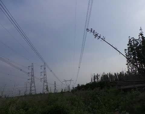 Sự cố mất điện toản miền Nam đã được phục hồi