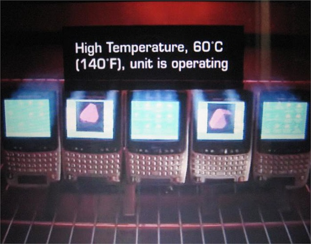 Dù là nhiệt độ cao lên tới 60 độ C...