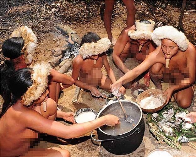 Bộ lạc Zo'é dùng quả hạch Brazil làm thức ăn và họ lấy sợi từ vỏ của chúng làm võng và trang sức.