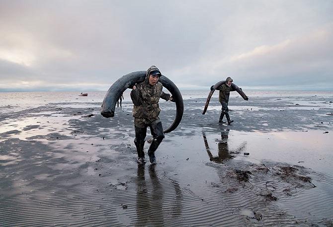 Những thợ săn đang khuân vác ngà trên bờ biển phía Bắc Siberia, nơi chúng sẽ được vận chuyển lên khu vực sông Yana để giao hàng. Một chiếc ngà tốt có thể đủ nuôi sống cả gia đình suốt mùa đông khắc nghiệt.