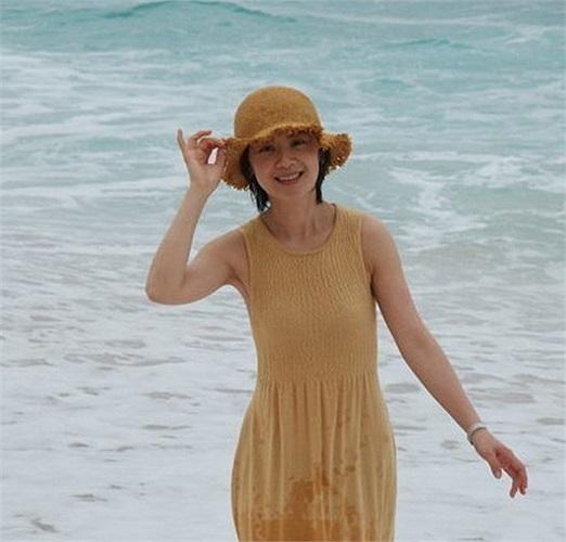 Trước đó, tháng 5/2011, nữ MC Khương Phong đăng ảnh về một căn biệt thự ở Pháp trên trang blog cá nhân của cô ấy với nội dung như sau: Căn biệt thự có 6 phòng ngủ, 1 bể bơi và khuôn viên 4.0000 m2, tọa lạc sát một ngọn đồi nhìn ra Địa Trung Hải
