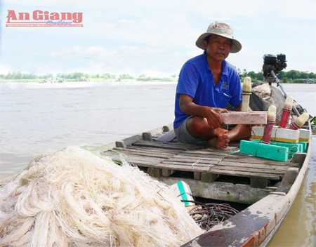 sông hậu, giăng lưới, cá lớn, đời ngư phủ