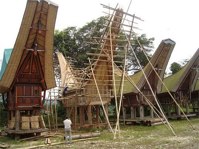 Không chỉ có nét tương đồng về kiến trúc xây dựng hay văn hóa sinh hoạt, người Minangkabau còn duy trì cuộc sống bằng  nghề truyền thống trồng lúa nước như người Việt bao đời nay.