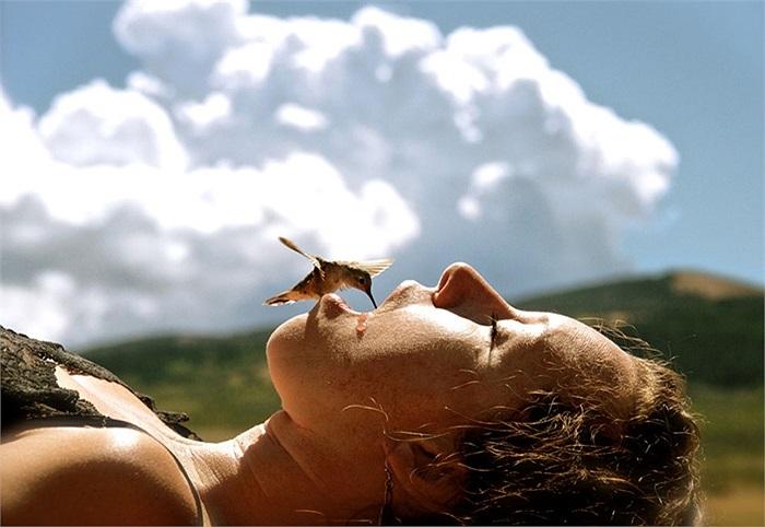 Chú chim ruồi khát nước, liều mình tìm đồ uống trong miệng người phụ nữ ở Wyoming, Mỹ